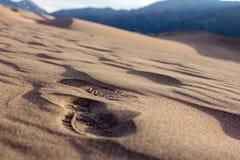 Gran parque nacional de las dunas de arena Foto de archivo libre de regalías