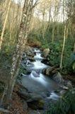 Gran parque nacional de las montañas ahumadas Imagen de archivo libre de regalías