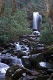 Gran parque nacional de las montañas ahumadas Imágenes de archivo libres de regalías
