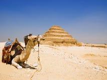 Gran pirámide del paso de progresión de Djoser Fotos de archivo libres de regalías