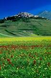 Gran plan de Castelluccio di Norcia Fotografía de archivo libre de regalías