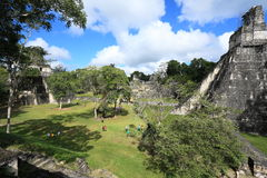 Gran Plaza and Mayan Temple Ruins, Tikal National Park, Guatemala Royalty Free Stock Images