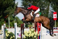 Gran Premio CSIO-W *** 10 agosto 2014 a Bratislava, Slovacchia Immagini Stock