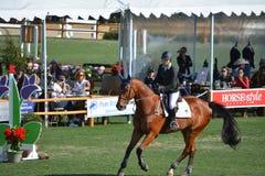 Gran Premio di salto del parco del cavallo di Paso Robles Immagine Stock