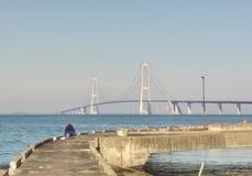 Gran puente colgante de la correa, Dinamarca Fotos de archivo