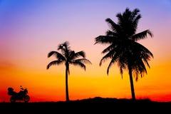 Gran puesta del sol con la silueta Foto de archivo libre de regalías