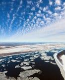 Gran río con masas de hielo flotante de hielo flotantes, visión superior Fotografía de archivo