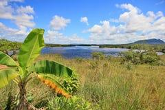 Gran Sabana über Carrao Fluss, Venezuela stockbild