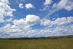 Gran Sabana #2 Royalty Free Stock Photos