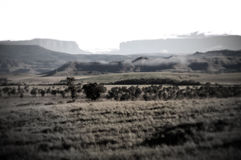 Fields Gran Sabana and Tepuys low saturation. This vast extension of land capture the development of the great sabana, the extension of grass then the mountains Royalty Free Stock Photography