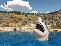 Gran tiburón blanco cerca de la playa Foto de archivo libre de regalías