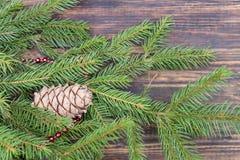 Gran-trädet filialen som dekoreras med röda pärlor och cederträet, lurar Royaltyfri Bild