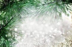 Gran-trädet mousserar den prydliga filialen med unfocused bokeh dekorljus Arkivfoto