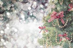 Gran-trädet mousserar den prydliga filialen med unfocused bokeh dekorljus Royaltyfria Bilder