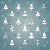 Gran trees1 Arkivbilder