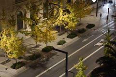Gran Vía de Granada at night with yellow ginkgo trees. Night landscape of the Gran Vía de Granada in autumn stock images