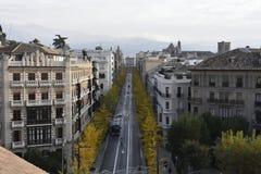 Gran Via de Granada com o biloba amarelo da nogueira-do-Japão do outono imagens de stock
