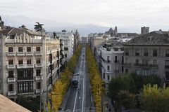 Gran Via de Granada med den gula höstGinkgobilobaen arkivbilder