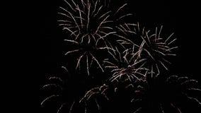 Gran visión desde lejos en una demostración colorida de la noche firework almacen de video