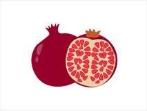Granaat vectorillustratie op wit Royalty-vrije Stock Fotografie