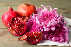 granaatappel en Chrysant Royalty-vrije Stock Foto