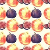 Granaatappel en van de fig.waterverf patroon op beige achtergrond royalty-vrije illustratie