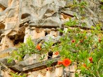 Granaatappelbloem op een achtergrond van oude artefacten Stock Afbeelding