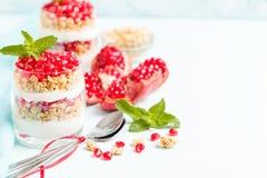 Granaatappelparfait - het zoete organische gelaagde dessert met granola schilfert, yoghurt en rijpe fruitzaden af stock afbeeldingen