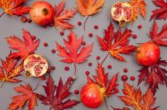 Granaatappels en van de herfst rood gevallen bladeren patroon op grijze backgr royalty-vrije stock foto's
