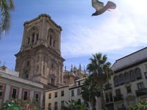 Granada. Old square in granada with cathedral stock photo