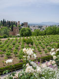 GRANADA ANDALUCIA/SPAIN - MAJ 7: Sikt av det Alhambra Palace Get Royaltyfri Foto