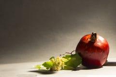 Granada de la fruta Foto de archivo