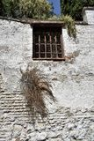 Granada great historic city of Spain-Andalusia, Old Town. Charming old wall with window and plant Royalty Free Stock Images