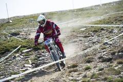 GRANADA HISZPANIA, CZERWIEC, - 30: Niewiadomy setkarz na rywalizaci halny zjazdowy roweru byk jechać na rowerze filiżanki DH 2013, obraz royalty free