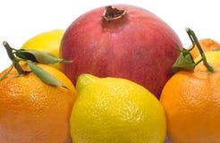 Granada, limones y naranjas con el isolat de las hojas Fotografía de archivo libre de regalías