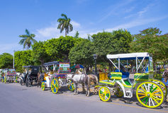 Granada , Nicaragua. MARCH 20 : Horse drawn wagons in Granada Nicaragua on March 20 2016. Granada was founded in 1524 and it's the first European city in Stock Photo