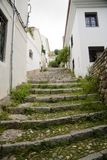 Granada old stairs covered in moss stock images
