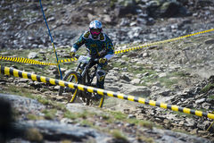 GRANADA, SPAIN - JUNE 30: Unknown racer on the competition of the mountain downhill bike Bull bikes Cup DH 2013, Sierra Nevada. Competition mountain downhill stock images