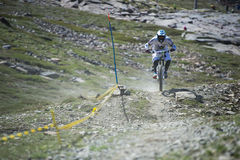 GRANADA, SPAIN - JUNE 30: Unknown racer on the competition of the mountain downhill bike Bull bikes Cup DH 2013, Sierra Nevada. Competition mountain downhill royalty free stock image