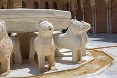 Granada - szczegół fontanna lwy w Nasrid pałac i sądzie lwy Fotografia Stock
