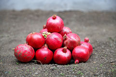 Granadas deliciosas maduras rojas Imagen de archivo