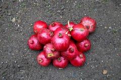 Granadas deliciosas maduras rojas Fotos de archivo libres de regalías