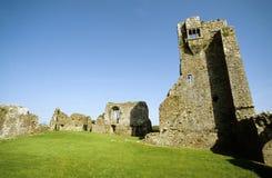 granagh kilkenny замока Стоковые Фото