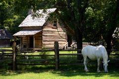 Granai del Tennessee Immagini Stock
