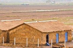 Granai dell'erba Fotografia Stock Libera da Diritti