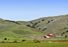 Granai rossi, Rolling Hills verde, California Immagine Stock