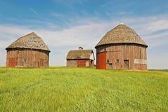 Granai rotondi geometrici su Indiana Farm Immagine Stock