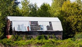 Granaio abbandonato con il tetto d'acciaio invaso fotografia stock libera da diritti