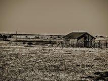 Granaio Artsy del cortile fotografia stock