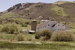 Granaio con il silos Fotografie Stock Libere da Diritti
